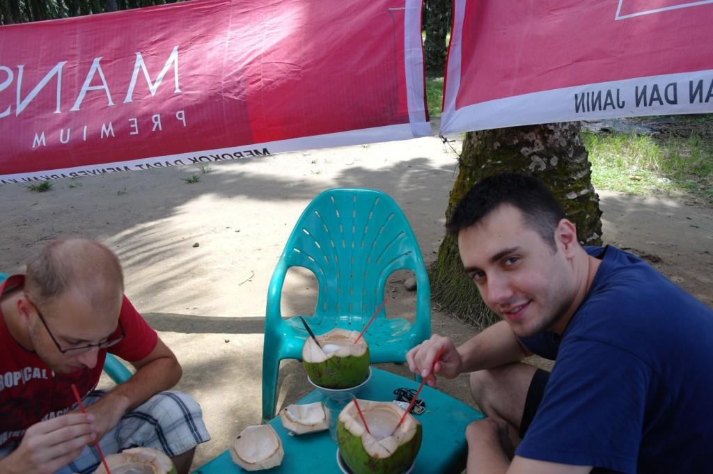 Kokosy w drodze do Bukit Lawang